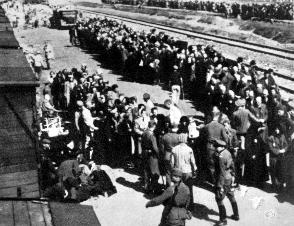 Missing Link: Auschwitz, die Befreiung