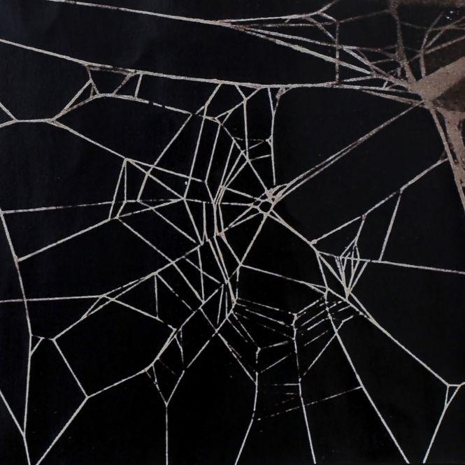 Schlampig gesponnenes Netz einer Spinne auf Koffein.